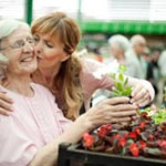 Does Your Elderly Loved One Need More Care than You Can Give article thumbnail